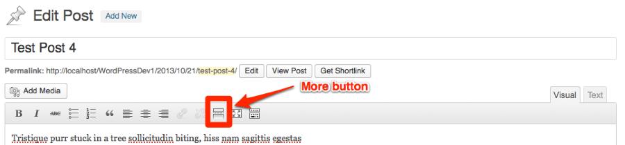 Edit Post Test Site WordPress