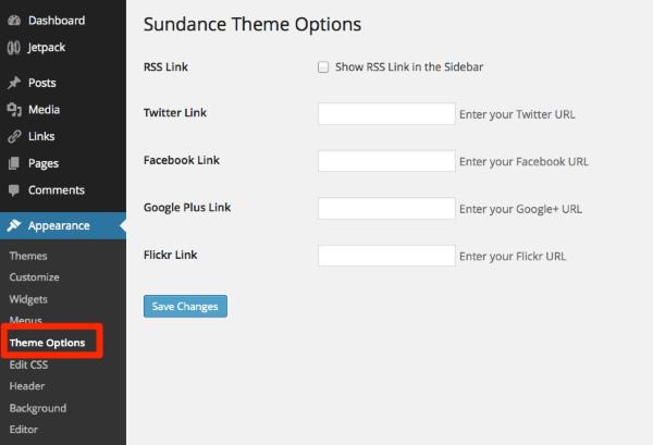 Theme Options Test Site WordPress