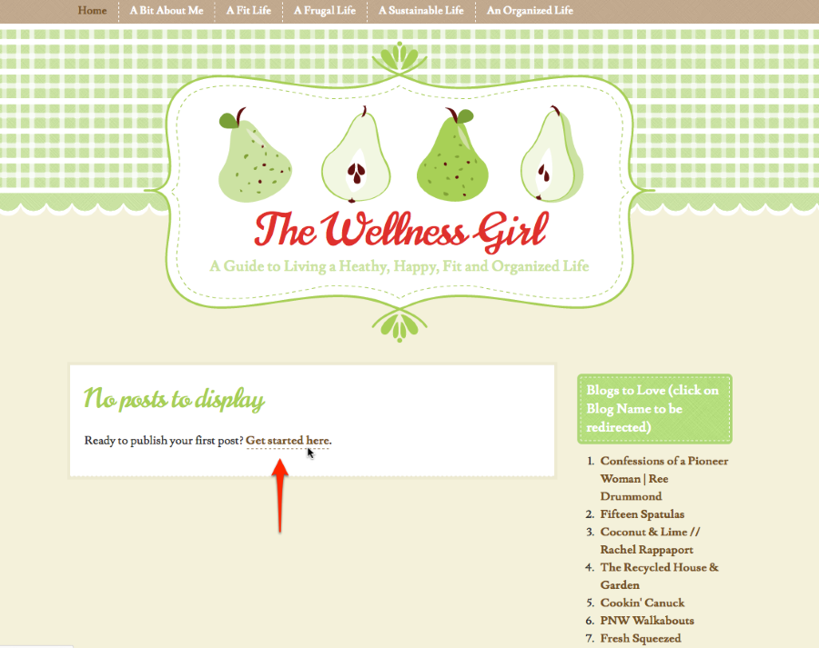 The Wellness Girl A Guide to Living a Heathy Happy Fit and Organized Life