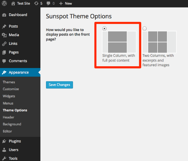Theme Options Test Site WordPress