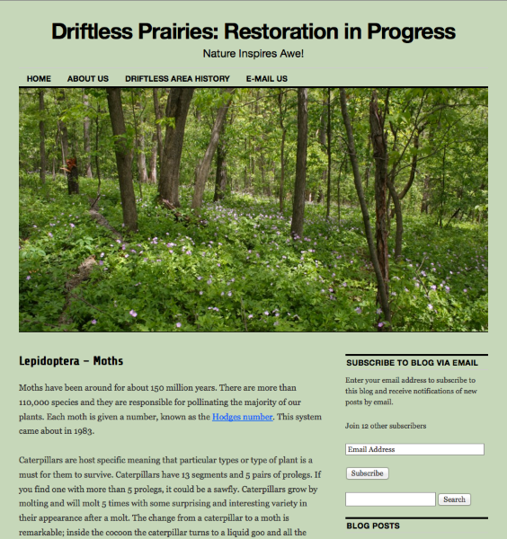 Lepidoptera Moths Driftless Prairies Restoration in Progress